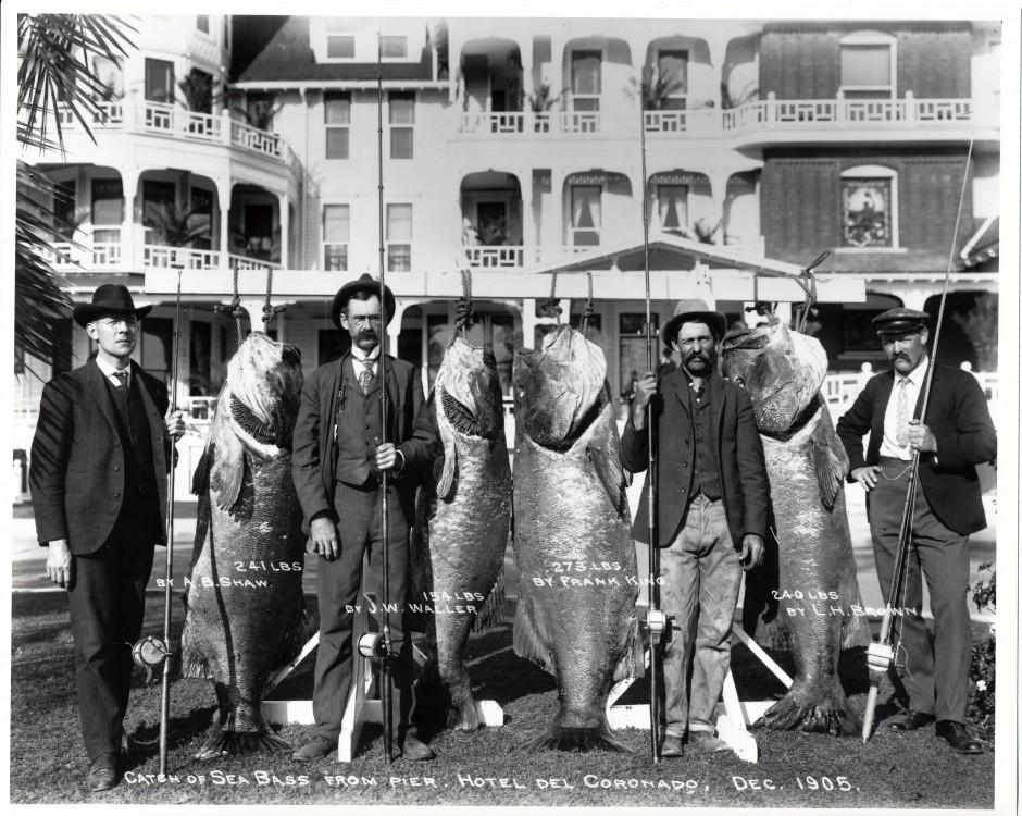 Hotel Del Coronado, Black Sea Bass, 1905