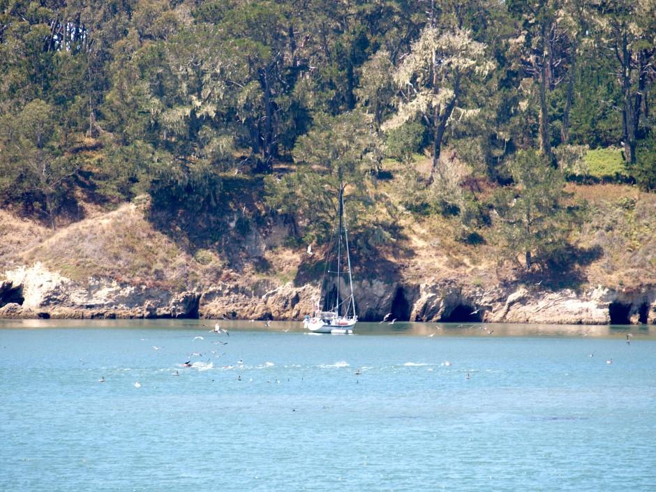 San Simeon Bay 1