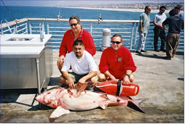 Great whites makos for Oceanside pier fishing reports