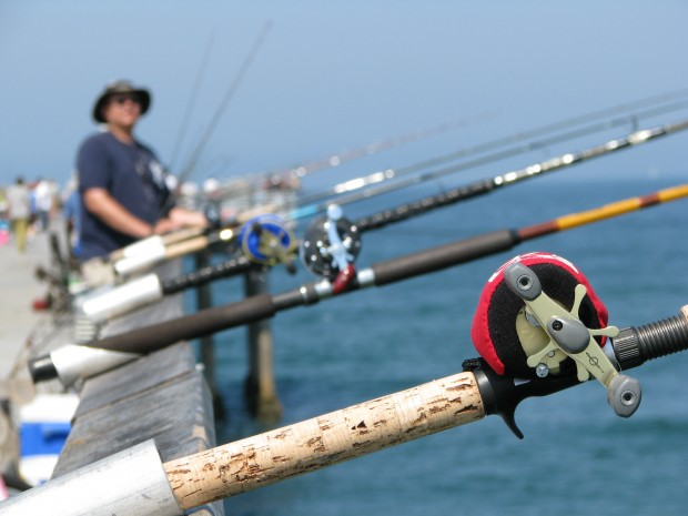 Ken jones writer pierfisherman page 18 for Best pier fishing rod