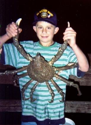 Spider.Crab_Ventura_2002_1