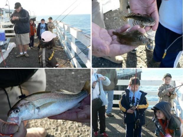 Ken jones writer pierfisherman for Santa cruz fishing