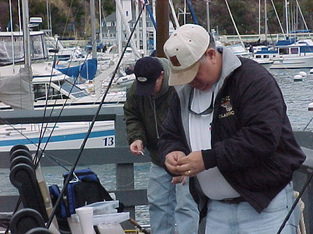 baitfish_and_skipper