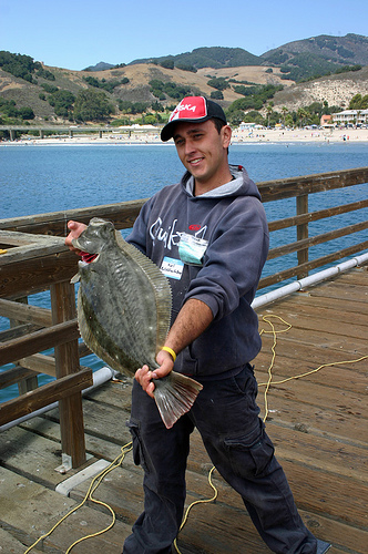 Avila_2008_Polish.F.D_Halibut