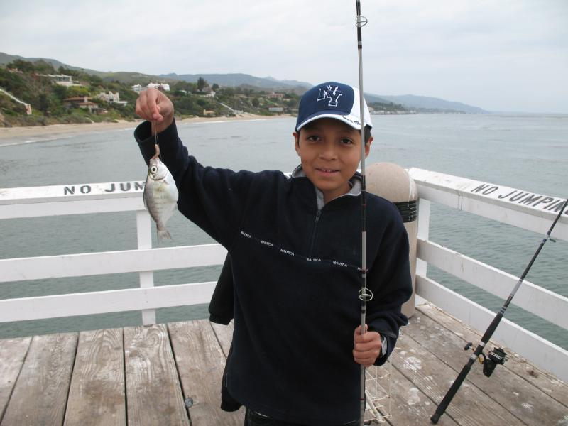 Walleye.Surfperch_PC_2009
