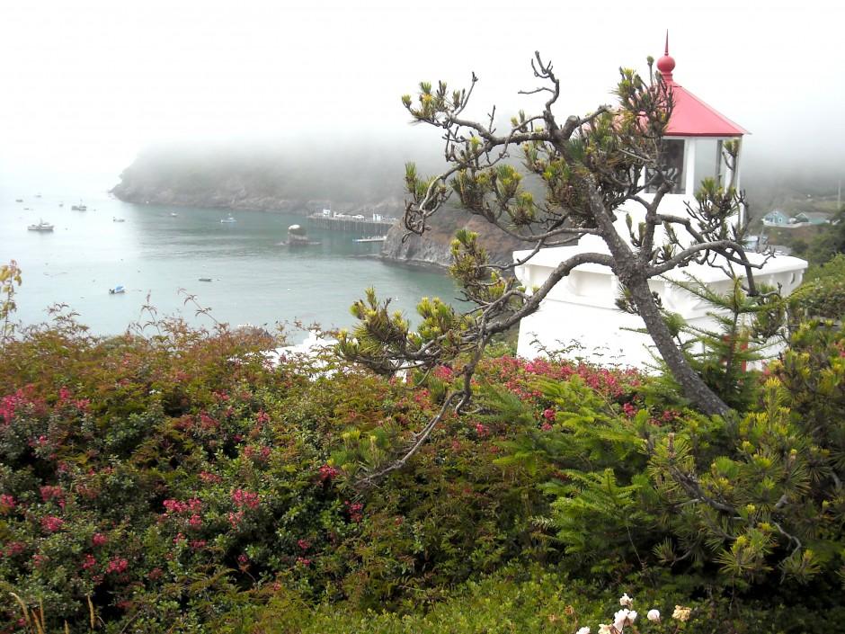 Trinidad_2008_LH_View2