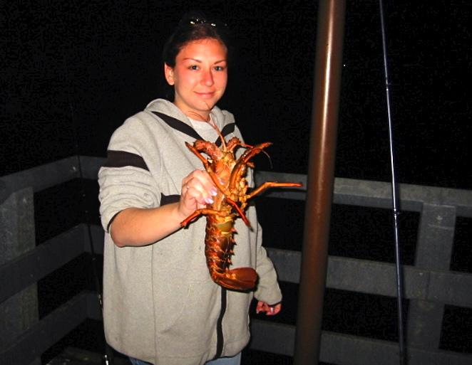 Cat_2002_GPP_Lobster_Lisa2