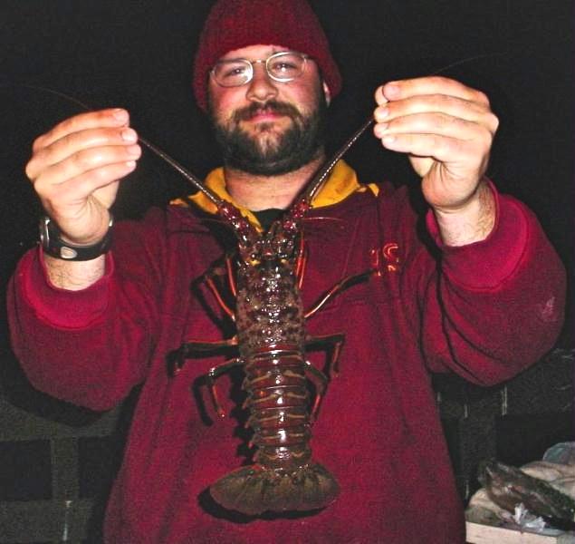 Lobster_Goleta_2004_Domphaben