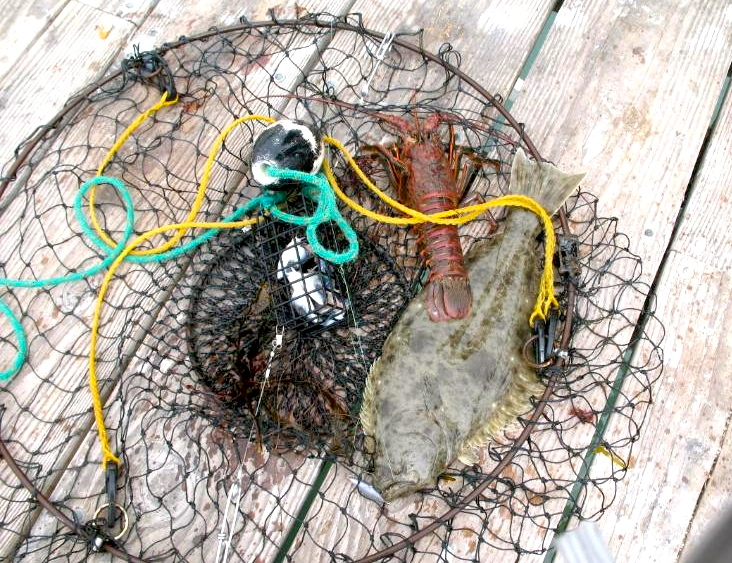 Lobster_Halibut_PC_2009