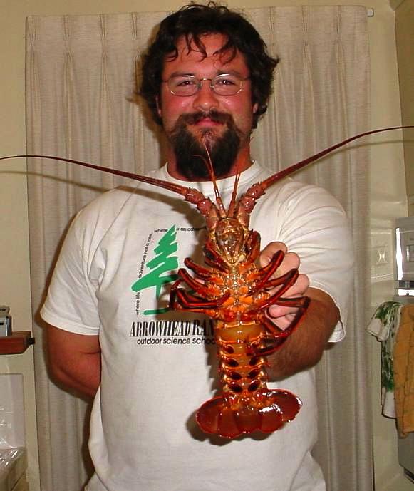 Lobster_SCP_2004_DomphaBen1b