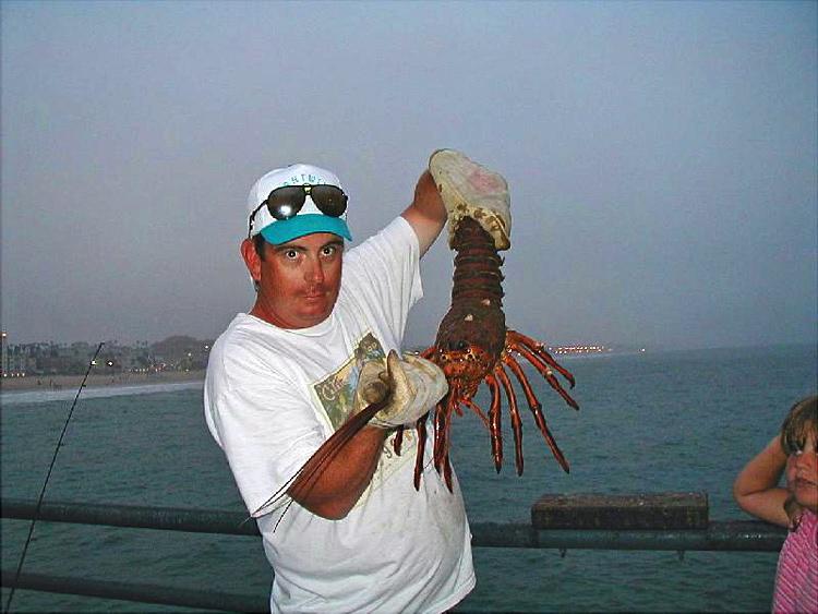 Lobster_SMP_2003