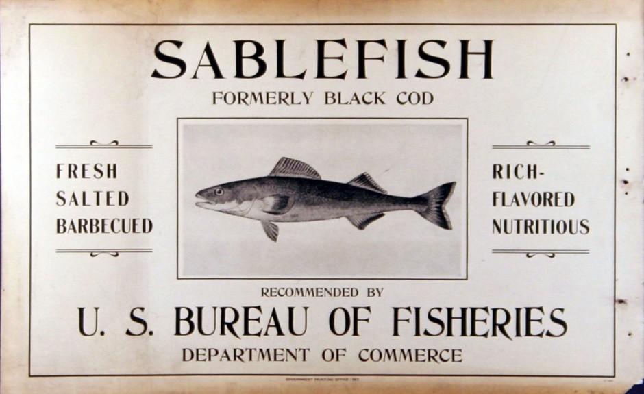 Sablefish_NOAA