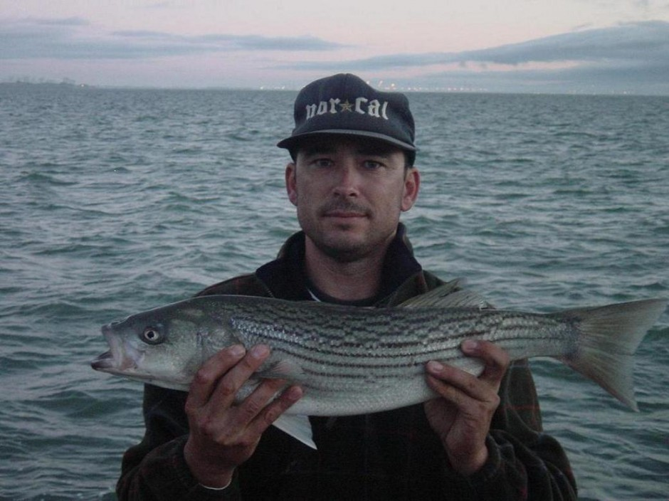 Striped Bass_Dumbarton_Pier_2004