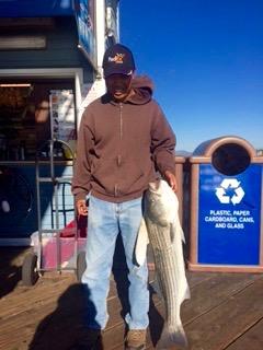 Striped.Bass_Oceanside.P_2016