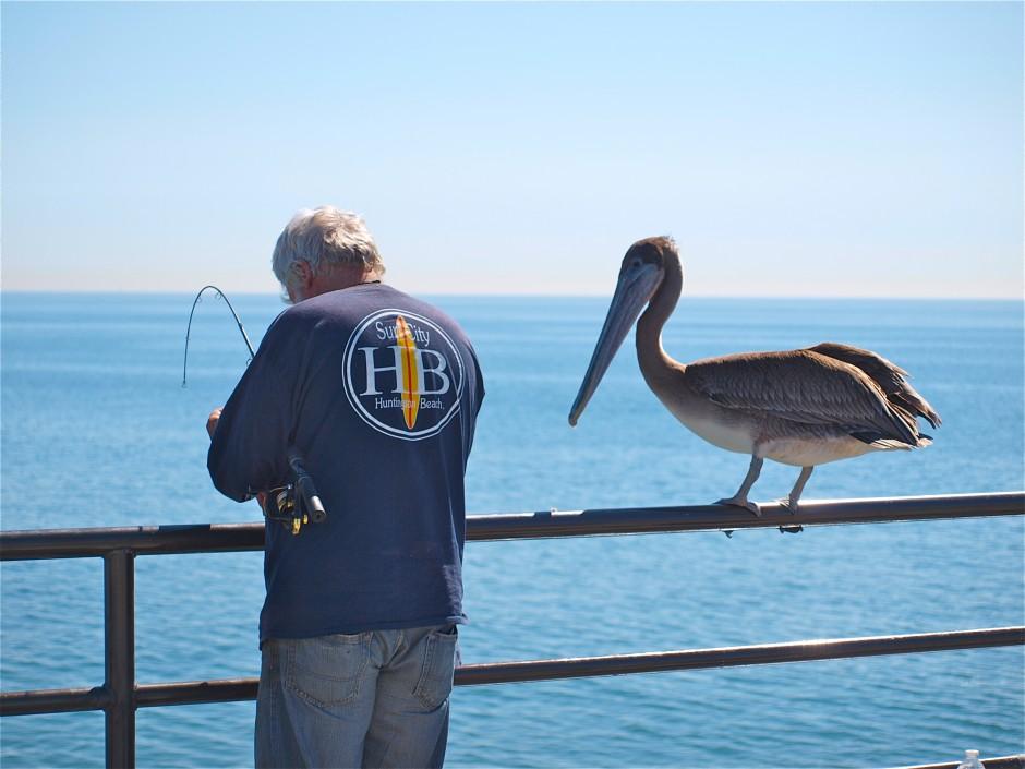 Olympus digital camera for Huntington beach pier fishing