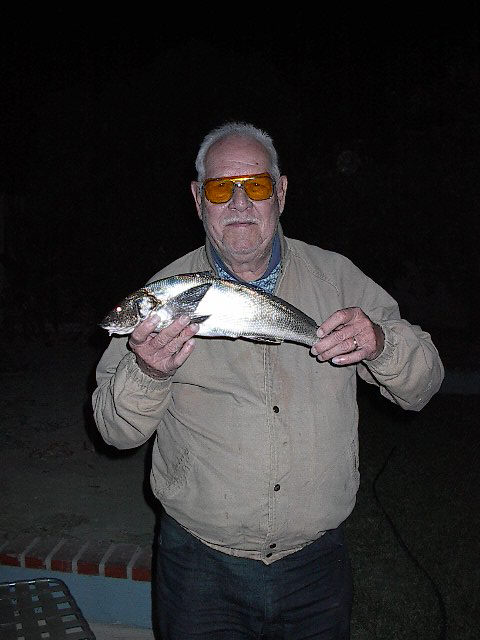 Corbina_SB_2001_9.1_Grandpa's_corbina