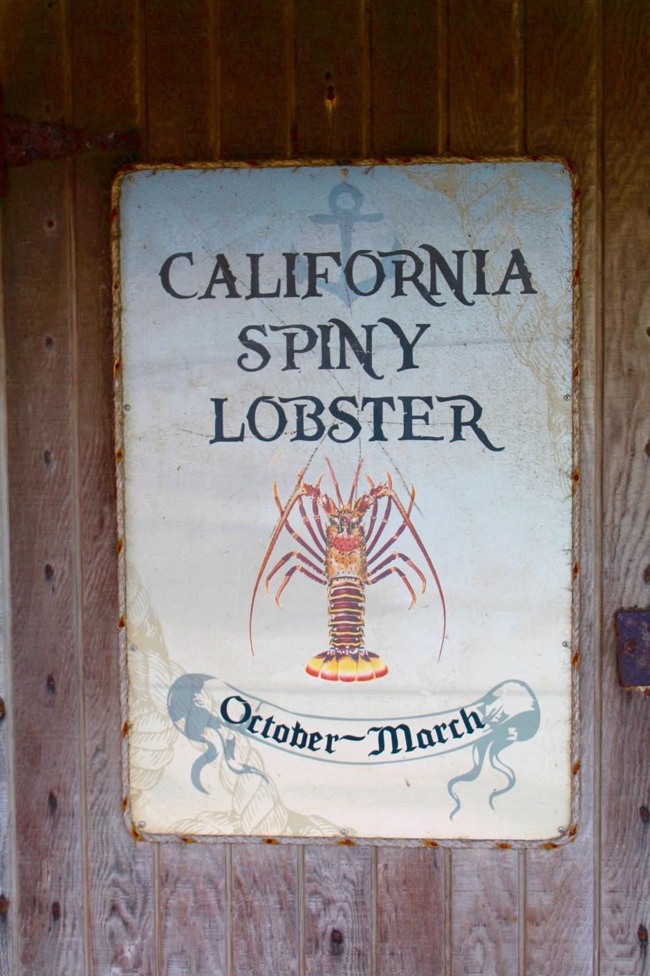 Newport.Dory_2018.3_Lobster.1