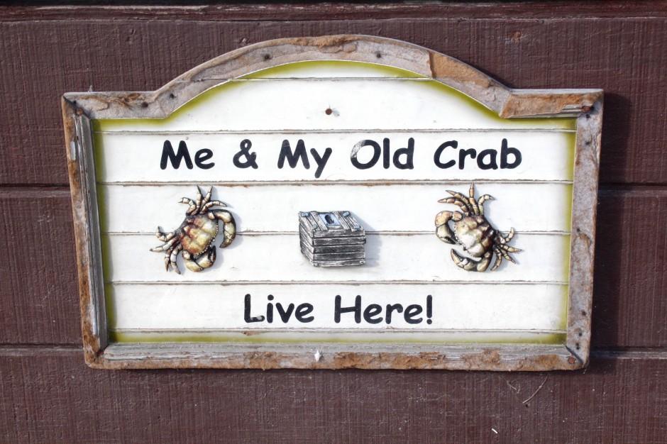 Newport_Dory_2018.3_Old.Crab